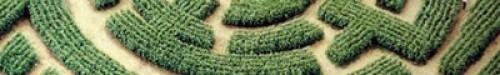 cropped-maze-labyrint_barvaux.jpg