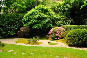 japanese_tea_garden_san_francisco_california.jpg